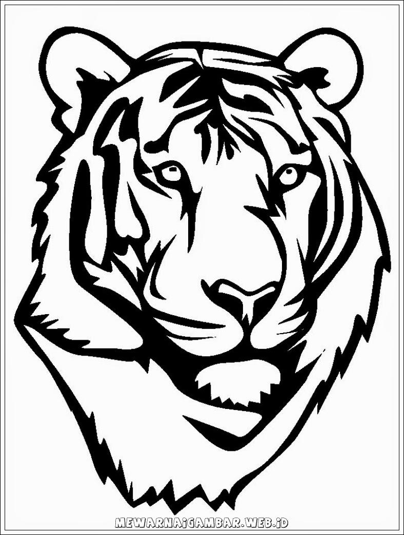 gambar macan - gambar kepala macan