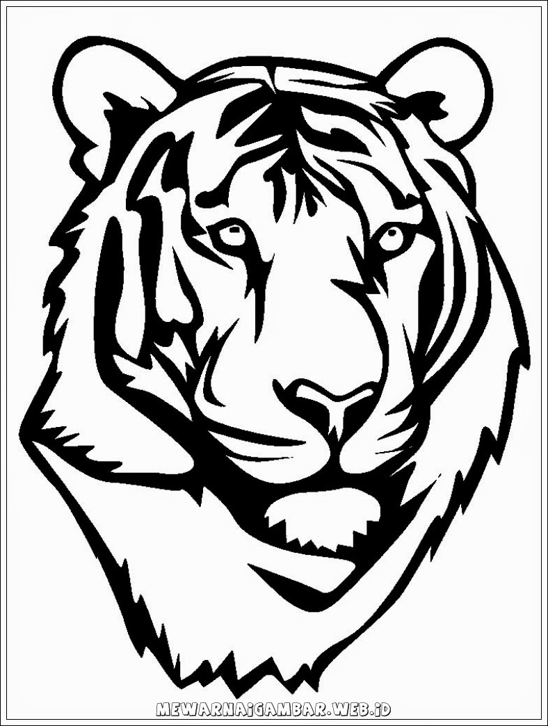 gambar kepala harimau untuk mewarnai