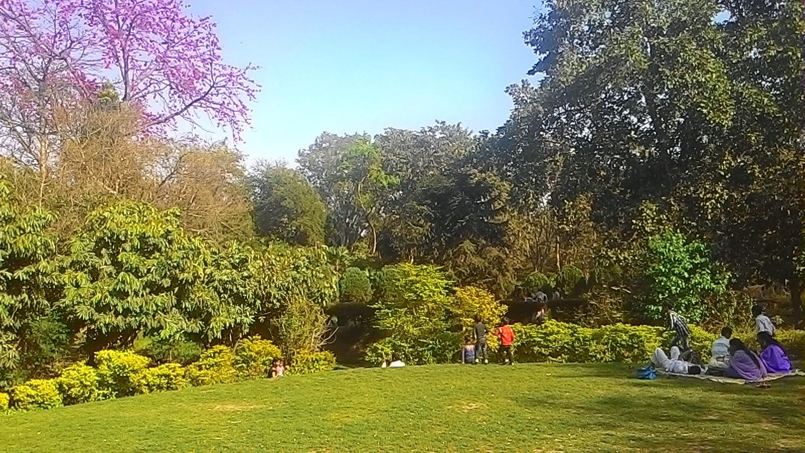 Inside Sanjay Gandhi Jaivik Udyan ( Patna zoo )