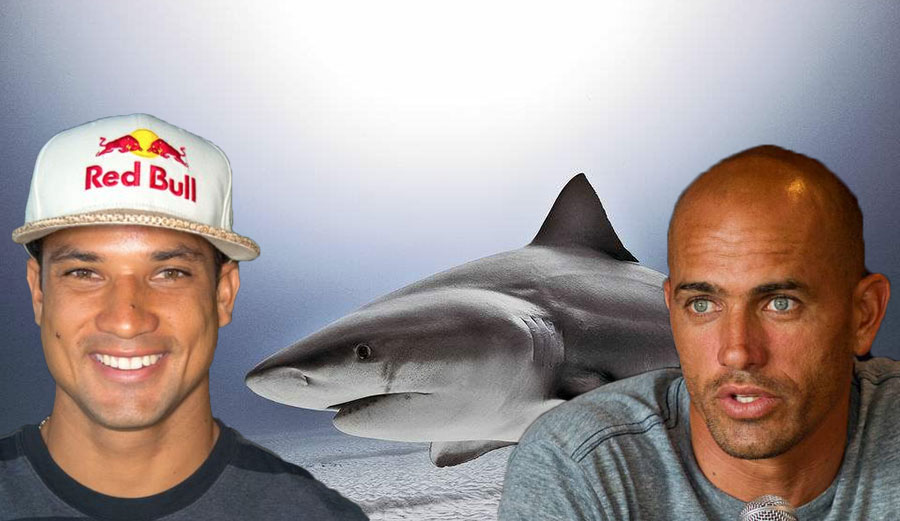 Kelly Slater,Right Bull,  and the Left shark welcome you