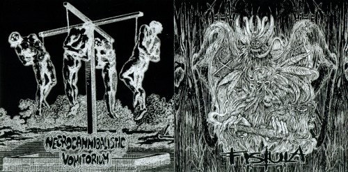 Free download Album Review Fistula - Necrocannibalistic Vomitorium - Split (2011)