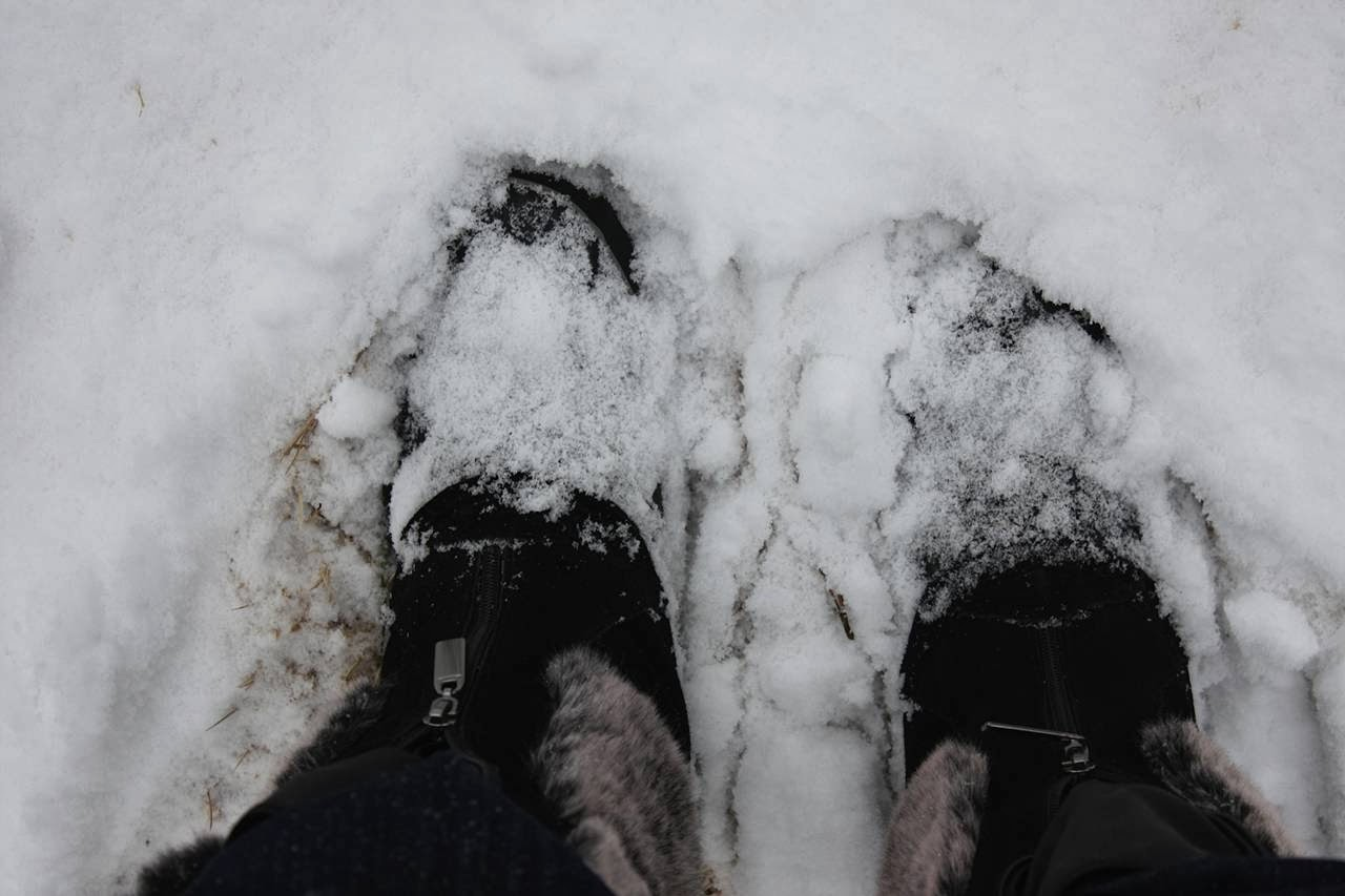 68401f28b2515f Jenni Horne   Snow Boots and Flip Flops