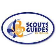 Pourquoi pas les Scouts?