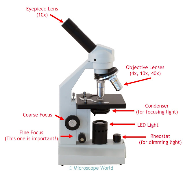 High school compound microscope HS-1M with detailed parts.