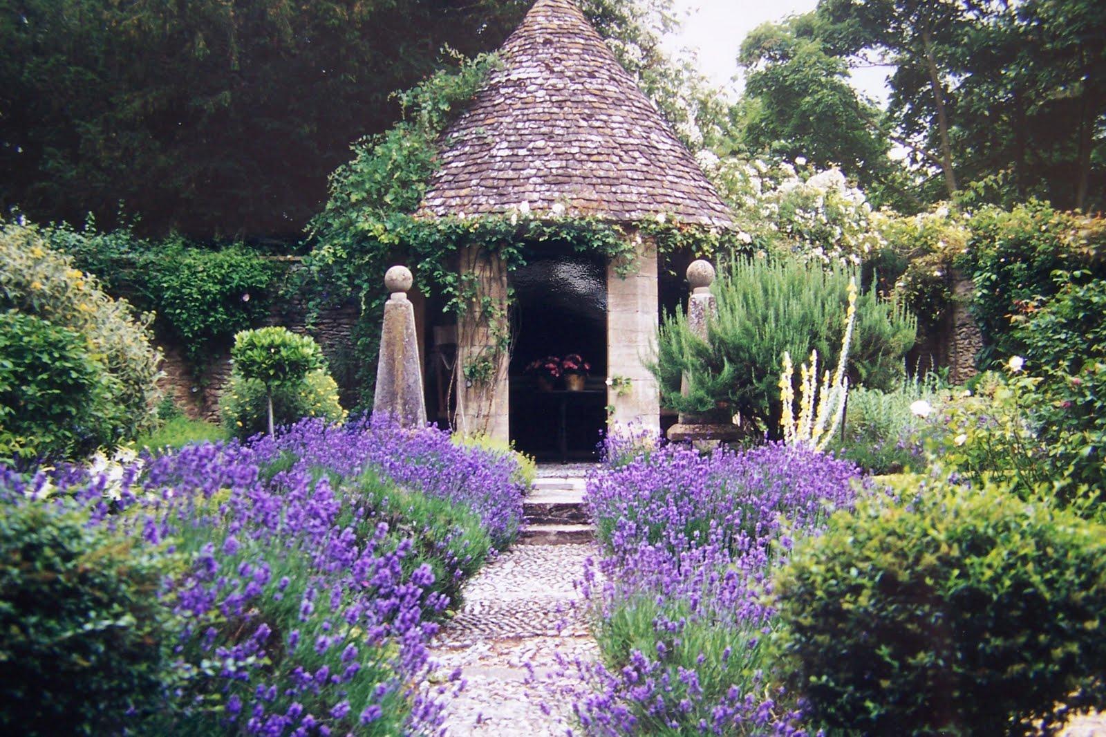 TARA DILLARD Vertical Gardening