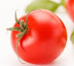 Buah Tomat dan khasiatnya