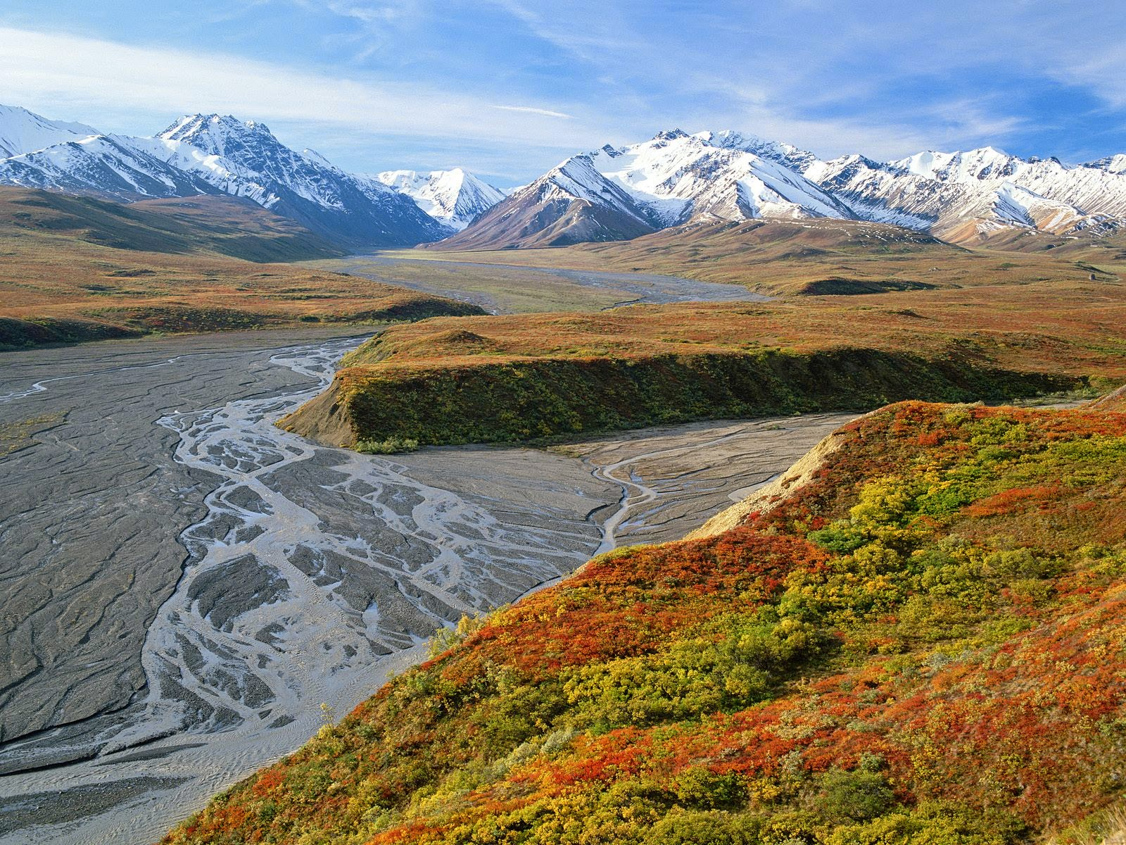 North America Alaska Denali National Park