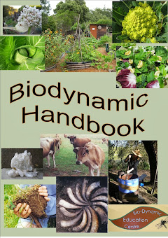 Introduction to the Biodynamic Methods