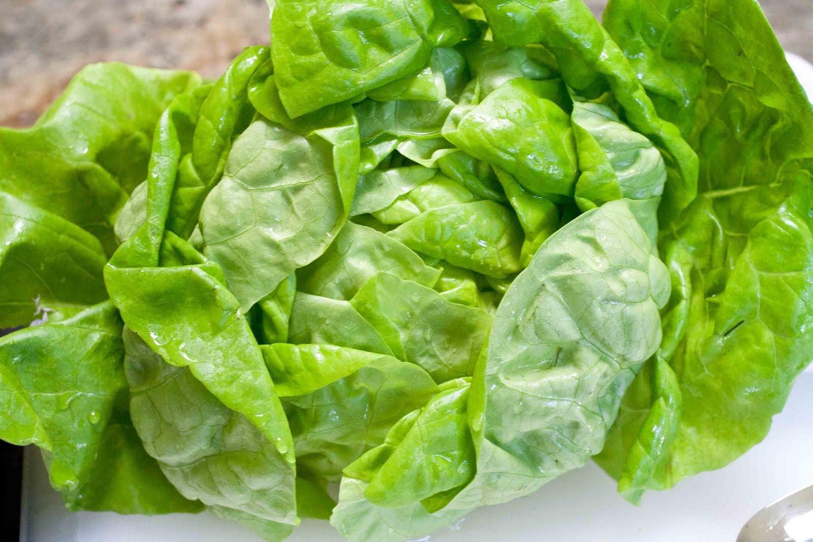 foodjimoto lettuce wraps
