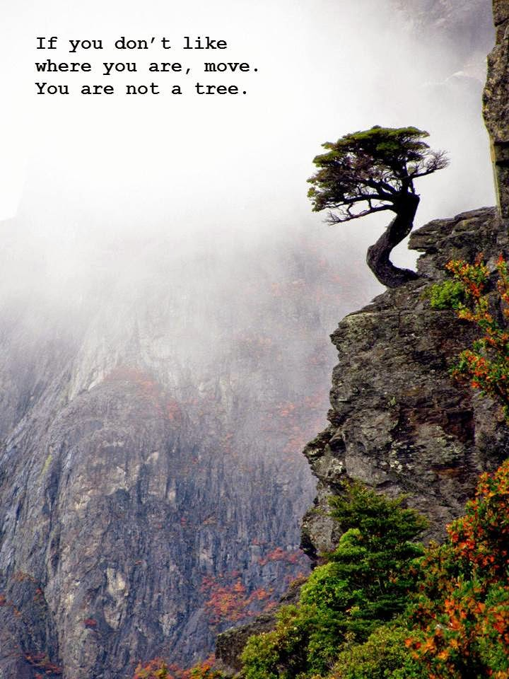 change, tree, cliff, canyon, courage, depression, endure, God, hope, healthy, life