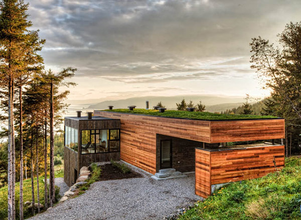 MU Architecture home with green roof