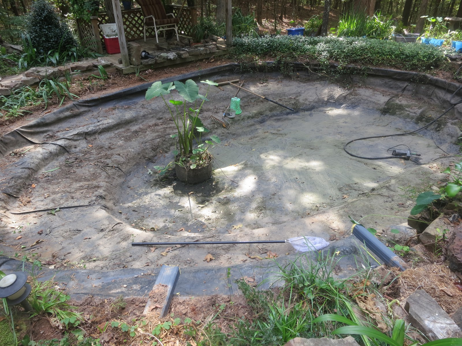 Prunepicker john 39 s koi pond new liner for Fish pond installation