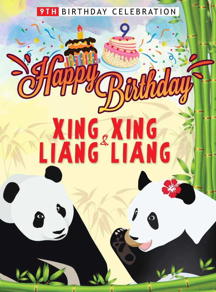 Tiket Percuma Masuk Zoo Negara Sempena Birthday Panda