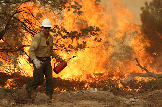 National Park Service director gets firsthand look at the Rim fire