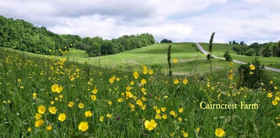 Cairncrest Farm