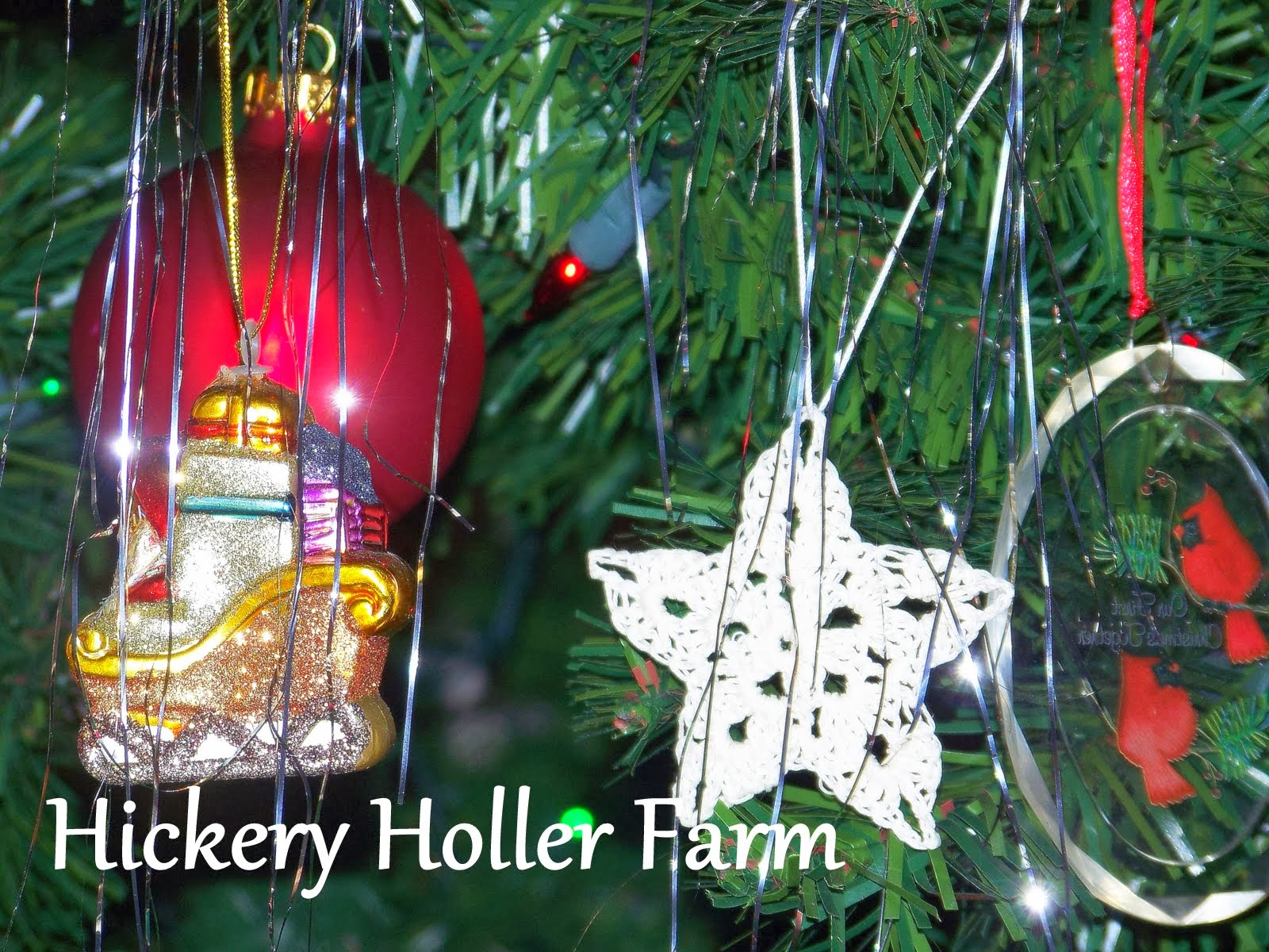 Hickery Holler Farm: December 2013