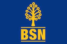 Jawatan Kerja Kosong di Bank Simpanan Nasional BSN 23 Mei 2015