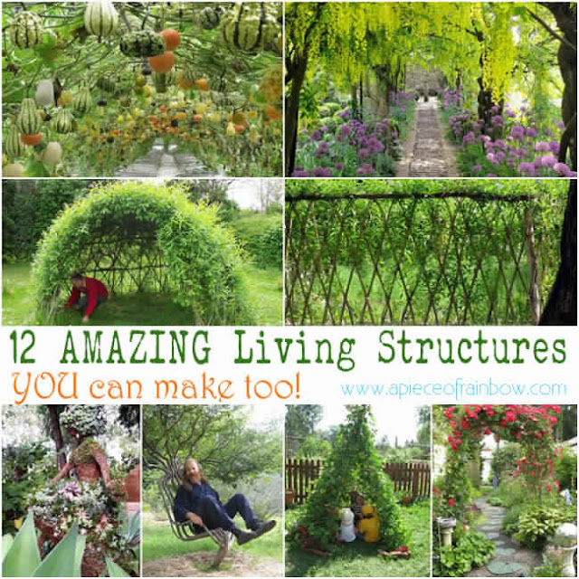 12 Amazing Living Structures You Can Create