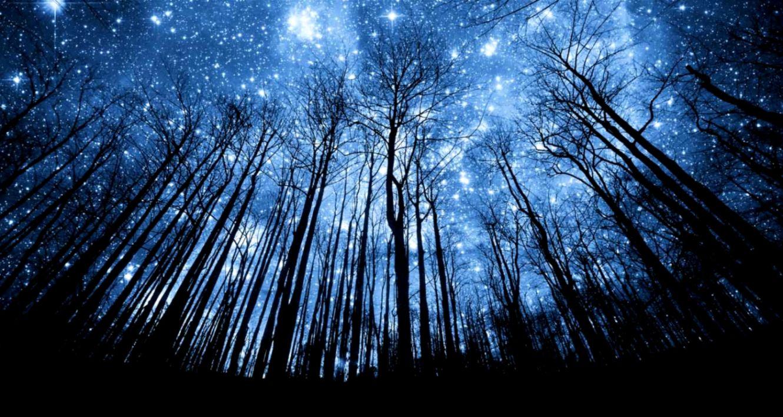 Beautiful Starry Night Desktop Wallpapers In HD