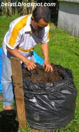 http://belati.blogspot.com/2015/03/cara-membuat-pupuk-organik-dari-sampah.html