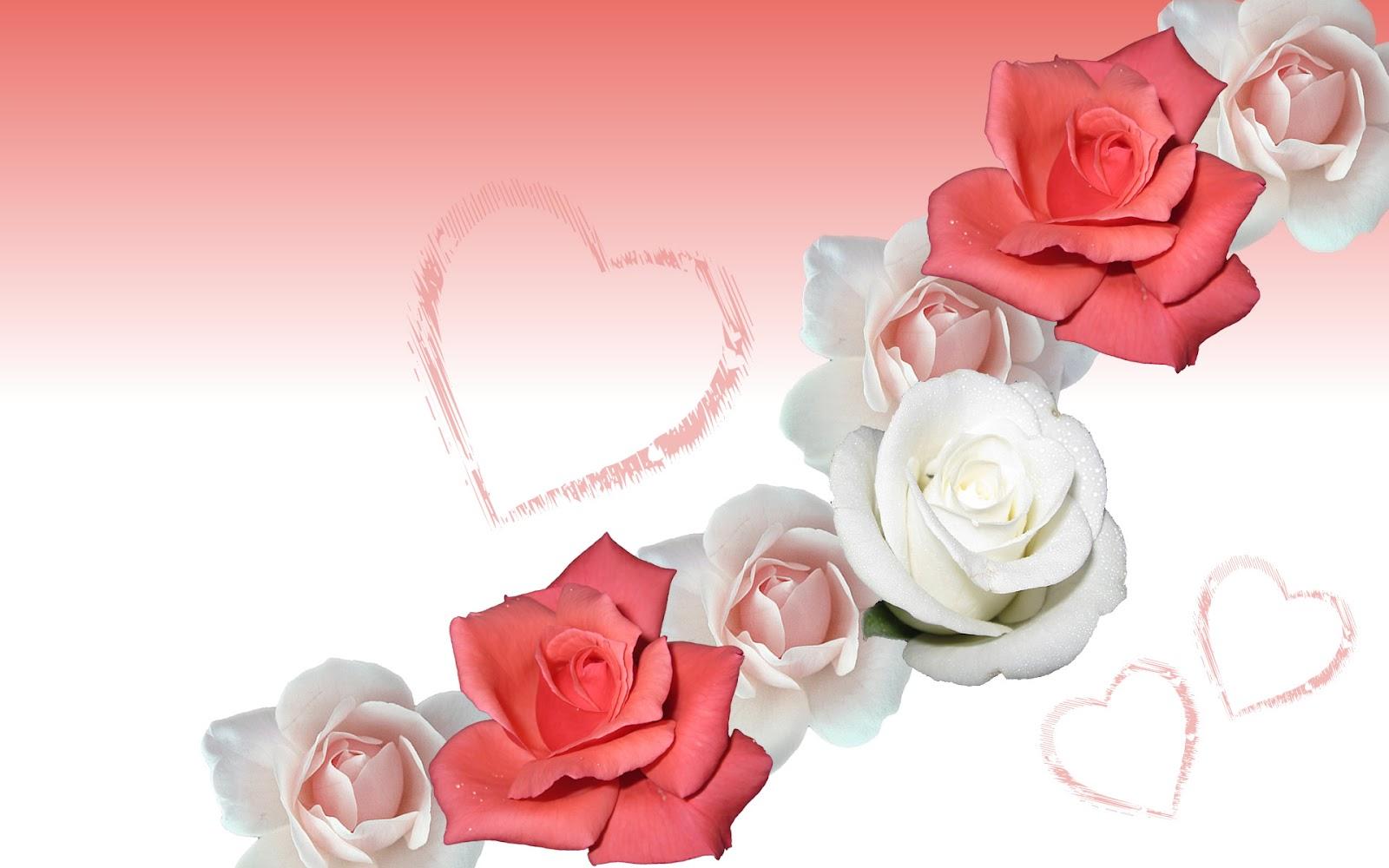 Kinds Of Wallpapers Rose Flower Wallpaper
