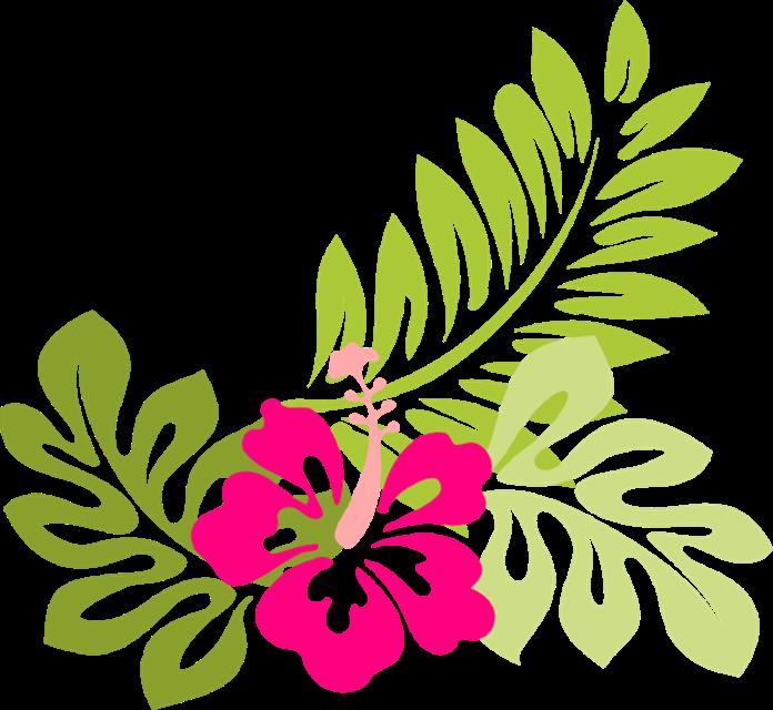 Hawaiian Flower Bouquet Clip Art