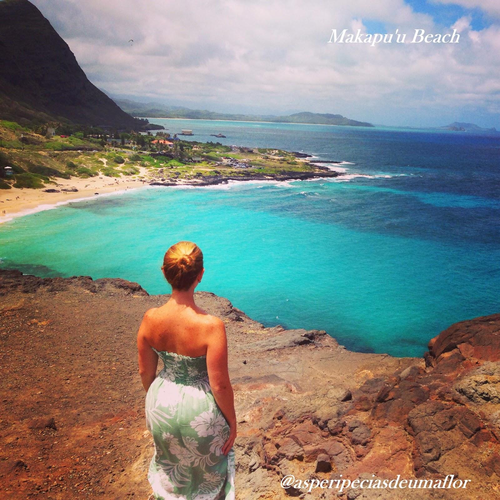 14 Praias Paradisíacas No Havaí - cover