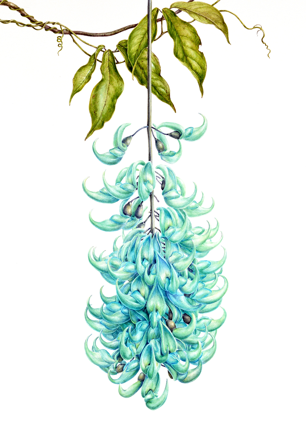 final JPEG image of jade vine painting saved for web