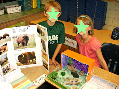 animal research paper 3rd grade