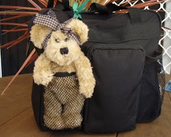 Poppy Bear is travelling the world