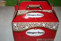 haagen dazs ice cream cake