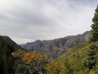 hike utah county, hiking in utah county, hiking american fork canyon, trails, pine hollow