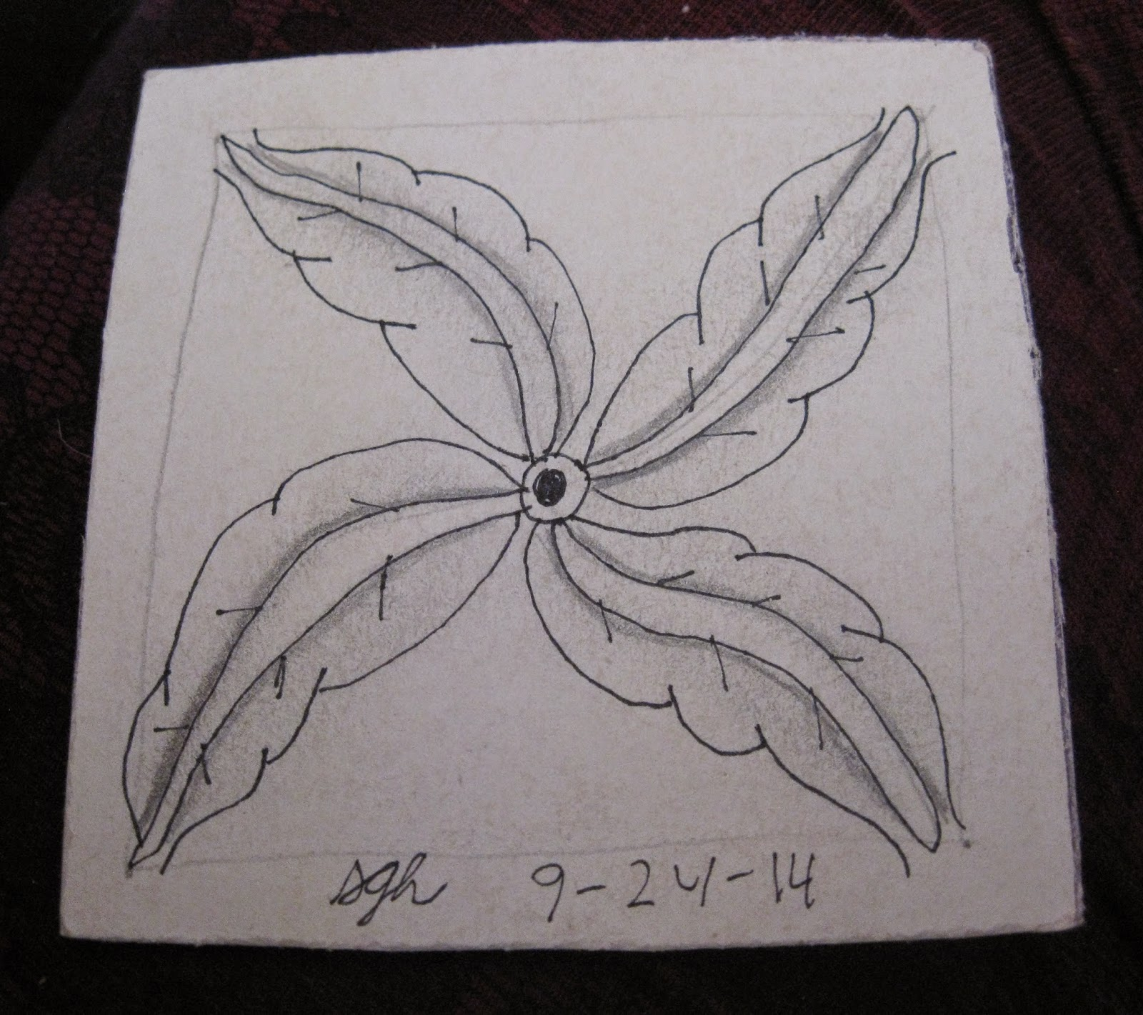 1000 images about Zentangle flowers on Pinterest