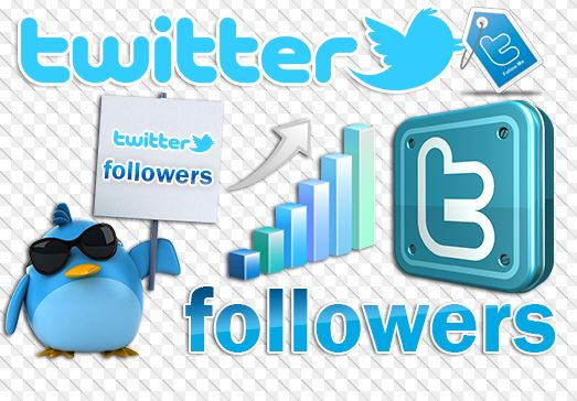 how to get a lot of followers on twitter hack