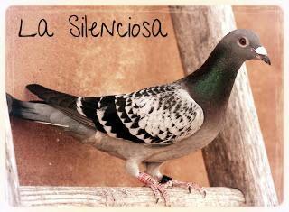 La Silenciosa