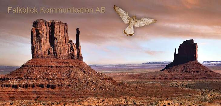 Falkblick Kommunikation AB