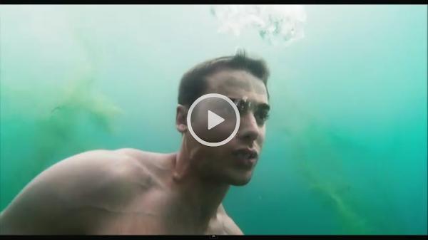 Watch Shark Night 3D Online Free   Putlocker