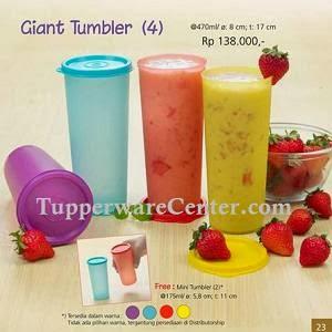 Giant Tumbler (4)