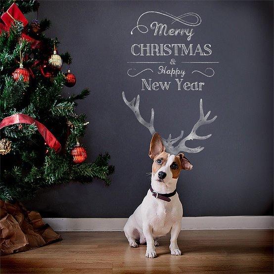 * Nubia_group Inspiration *: Sharing nice Christmas Cards ...