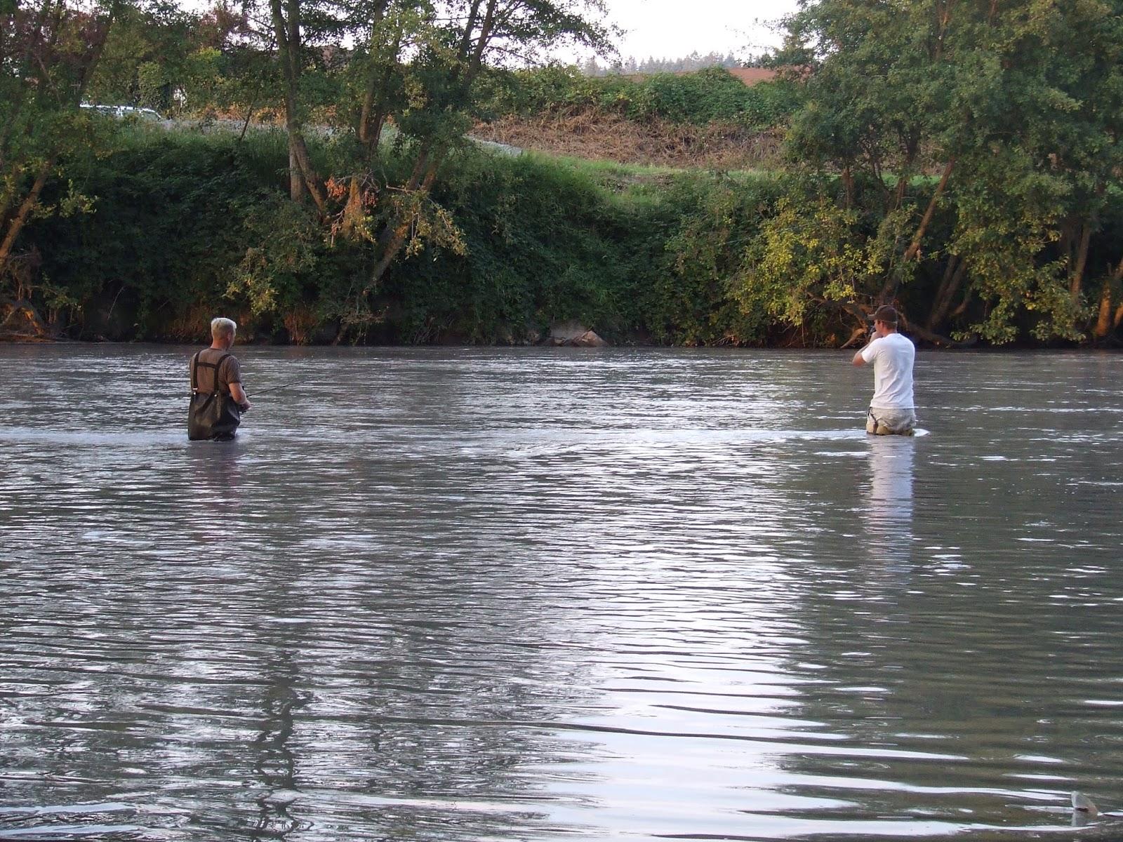 Puyallup river fishing report puyallup river is open for Puyallup river fishing