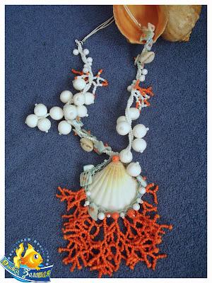 коралл ракушка