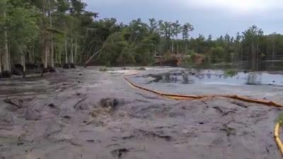 Buraco gigante se forma em lago dos EUA e suga várias árvores em questão de segundos
