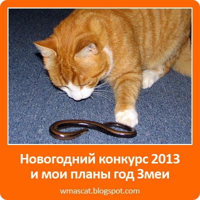 Новогодний конкурс 2013 и мои планы год Змеи