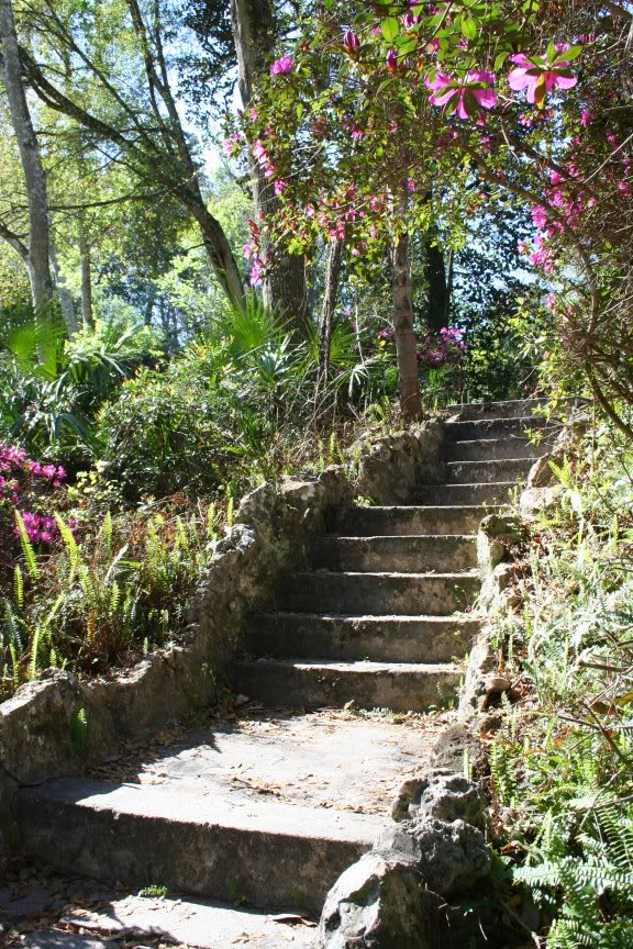 Gone Gardening: Ravine State Gardens