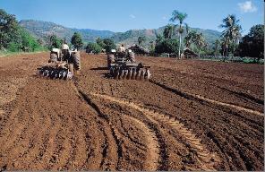 Proyecto del maiz - Preparacion de la tierra para sembrar ...