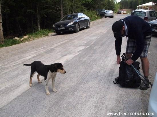 ブルガリアの犬、ブルガリア観光、トレッキング、リラ山脈七つの湖、ゲームオブスローンズ