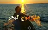 مدونة / رضا على