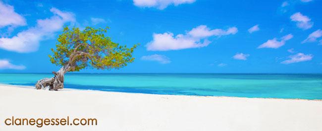 landscape aruba eagle beach
