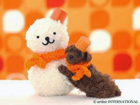 Cute Dogs 15