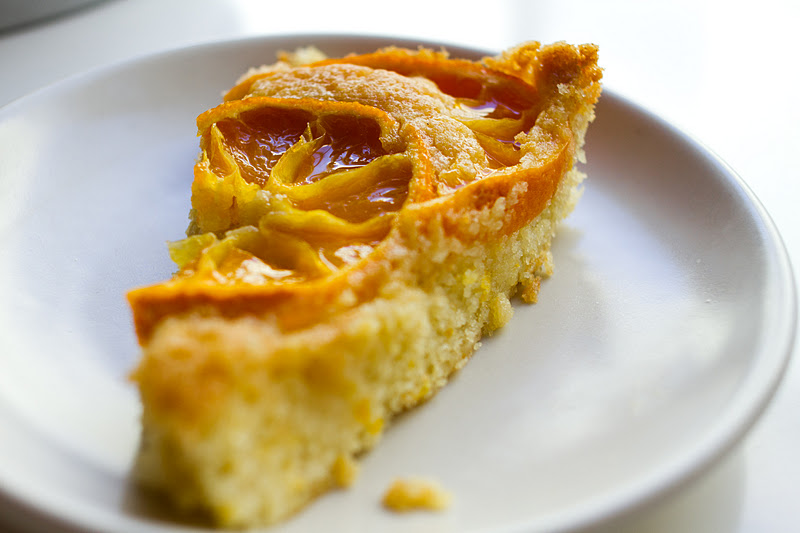 Juicy Satsuma Orange Cake via Andrea Reusing's Cooking in the Moment